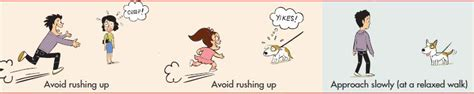 The Learning 2 By Dr Cheah Yin Mee preventing bites by learning to greet dogs properly dr yin