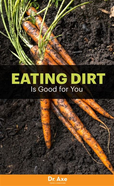 eat dirt why leaky gut may be the root cause of your health problems and 5 surprising steps to cure it books why you should eat dirt yes dirt your the o