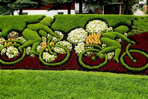 Totally Wacky And Unique Garden Shrubs Bushes And Hedges Wacky Garden Ideas