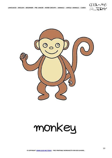 jungle animal flashcards printable jungle animal flashcard monkey printable card of monkey