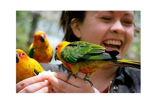 tracy aviary utah coupons