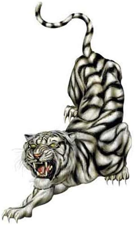 white tiger tattoos designs and tiger demixo tiger design