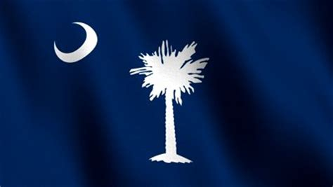 South Carolina Records Free Image Gallery Sc Flag