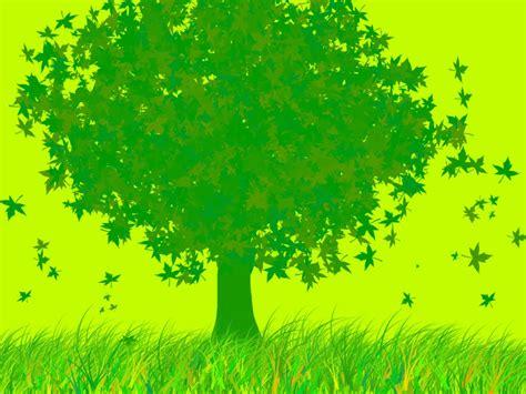 imagenes verdes gratis quiero mi metro cuadrado verde sitiocero