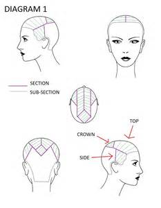 hair sectioning diagrams hair color foiling techniques