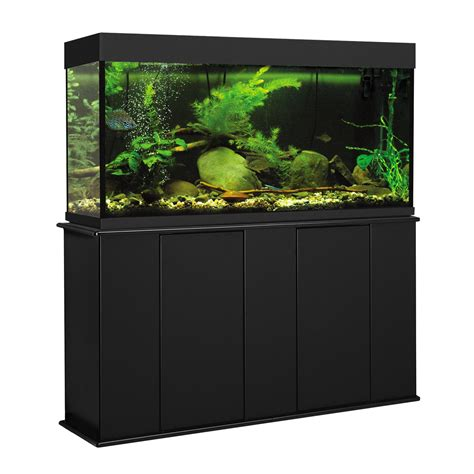 Stand Galon aquatic fundamentals 55 gallon upright aquarium stand petco