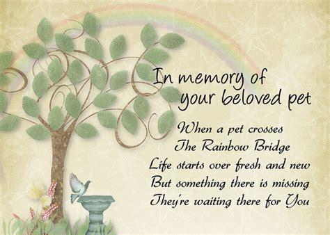 Comforting Words For Of A Pet by Rainbow Bridge Pet Loss Sympathy Rainbow Bridge Poem