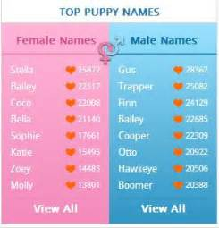 The top puppy names are in are the names of any of your furry friends