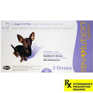 comfortis for dogs 5 10 lbs revolution rx for dogs 5 1 10 lbs 3 month purple