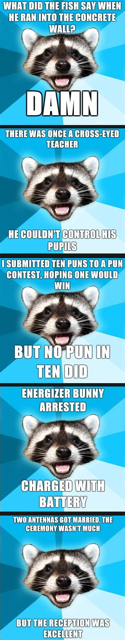 Bad Pun Raccoon Meme - pics that make you lol everytime part 2 page 160