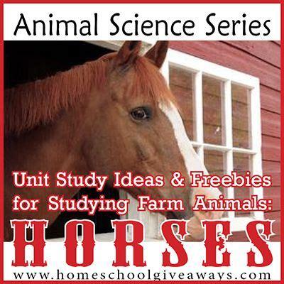 animal farm series 1 1099 best animal животные images on