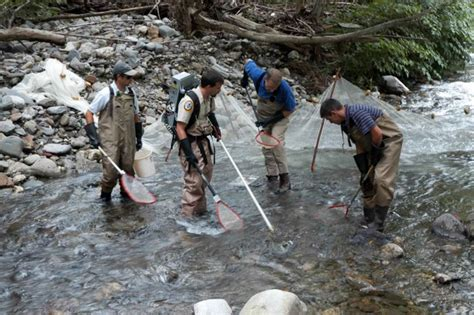free picture fishermen damming shallow fast mountain