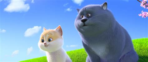 regarder oscar et le monde des chats regarder streaming vf en france oscar et le monde des chats film streaming