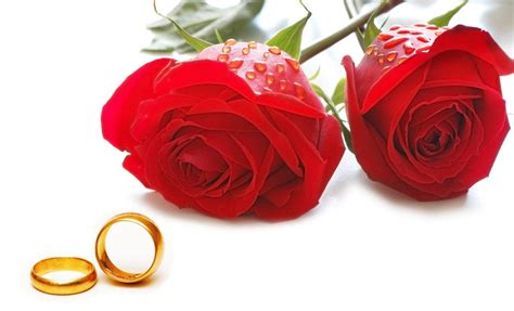 cincin xuping mawar by mds shop bunga mawar adalah simbol menghormati dan cincin adalah