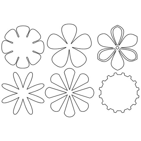 flores de 5 petalos para imprimir dibujos de flores de 5 petalos para colorear