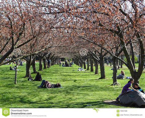 Garden City Ny Part Time Botanic Garden April 2016 Part 2 85 Editorial