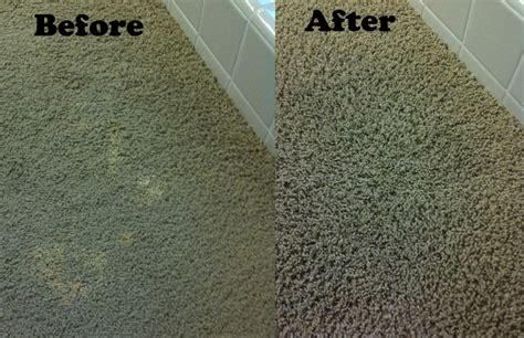 how to a rug color spot correction on carpet in boston regal fabric care 781 995 0683