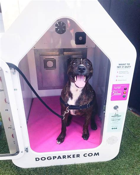high tech dog house high tech on demand climate controlled dog houses exist sound books