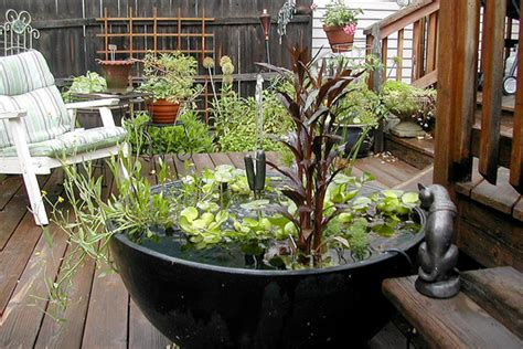 Small Container Garden Ideas Container Gardening Ideas Small Space Gardening Houselogic