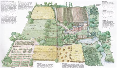queen-of-denial: wishing of a homestead 1 Acre Horse Farm Layout
