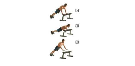 plyometric bench press pectoral exercises for chest workout health articles
