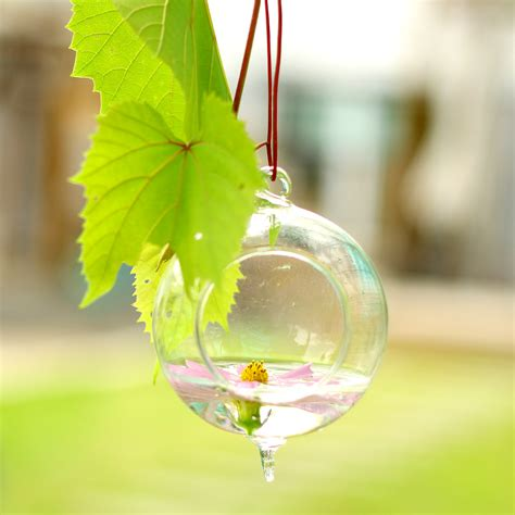 Hanging Glass Flower Vase by 2016 Sale Fashion Clear Hydroponics Hanging Glass