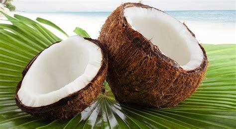 c 243 mo estar m 225 s guapa gracias al aceite de coco