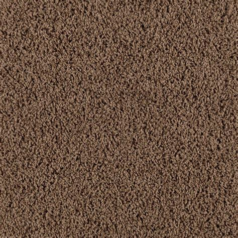 lifeproof bassano i color woodland 12 ft carpet 0535d