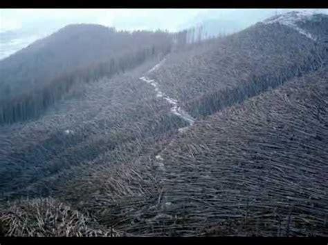 imagenes impactantes de la naturaleza fotos impactantes de la naturaleza youtube