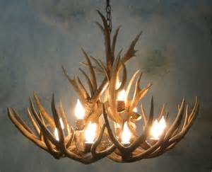 How To Make Antler Chandelier Small Bristlecone Mule Deer Antler Chandelier