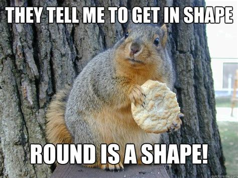 Dead Squirrel Meme - physical fitness from the ranch pen a danni mcgriffith blog