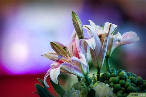 comprare fiori come comprare fiori per un funerale 3 passaggi