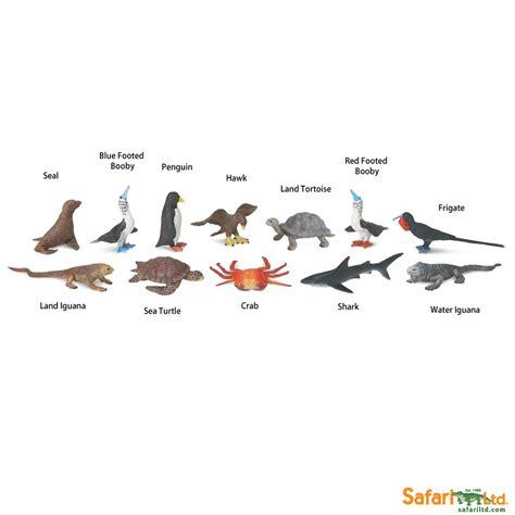 Safari Ltd Toobs galapagos toobs 174 safari ltd 174 educational toys