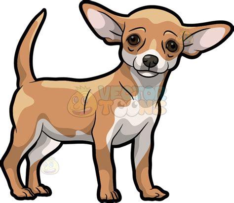 Chihuahua Clipart a beautiful chihuahua vector clip