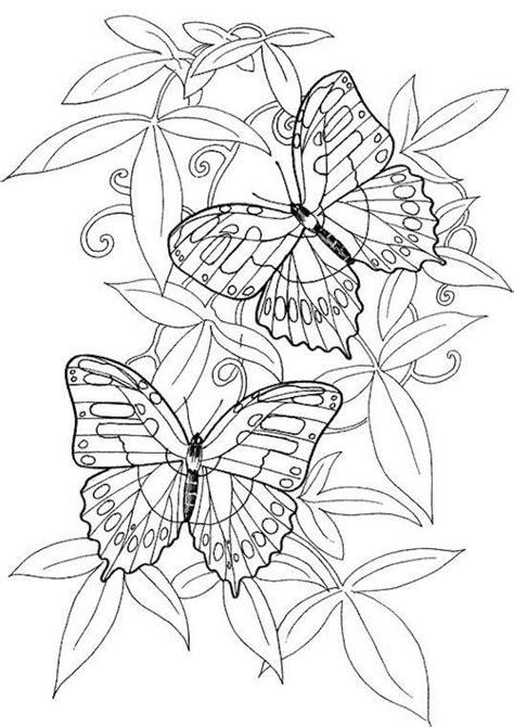 Coloriage Papillon Difficile à décorer