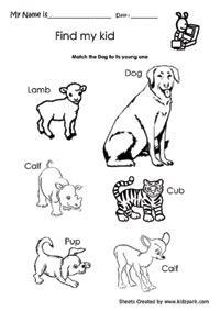 kindergarten science worksheets submited images