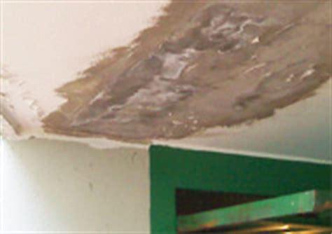 infiltrazioni d acqua dal terrazzo infiltrazioni d acqua terrazzo o tetto