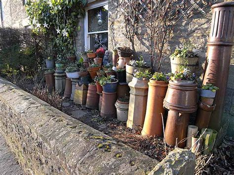 Chimney Planter by File Chimney Pots As Planters Geograph Org Uk 1098627