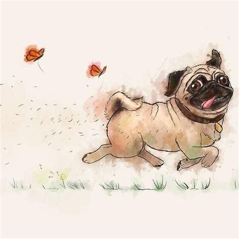 furminator for pugs best 25 pug ideas on a pug pug and creepy drawings