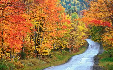 fall colors in maine 12 beautiful maine fall foliage locations travel leisure