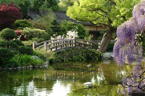 Hakone Gardens by Bowl 50 Countdown 19 Weeks To Go Time To Talk