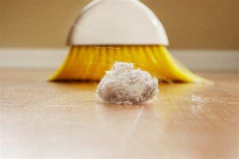 acari da materasso acari letto consigli e rimedi naturali per disinfettare il