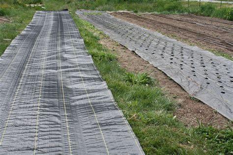Landscape Fabric With Holes Landscape Fabric 171 Soil Farm