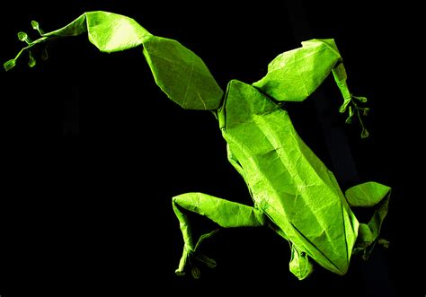 Origami Tree Frog - the origami animals of matthieu georger 171 twistedsifter