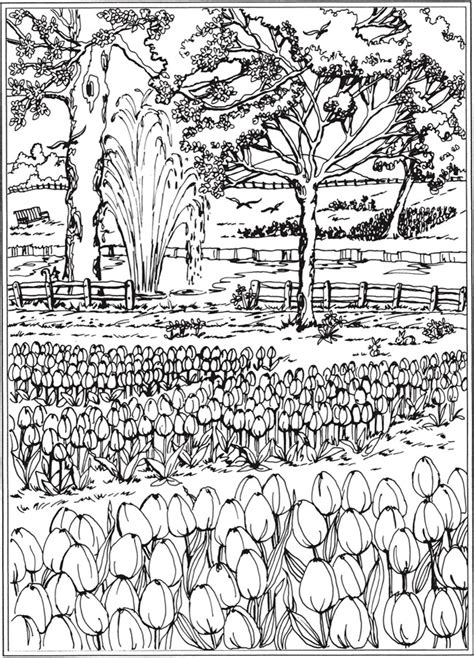 in the garden coloring book books welcome to dover publications
