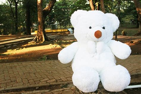 Boneka Beruang White Teddy Boneka Beruang Teddy Putih Besar 1 M Boneka Beruang