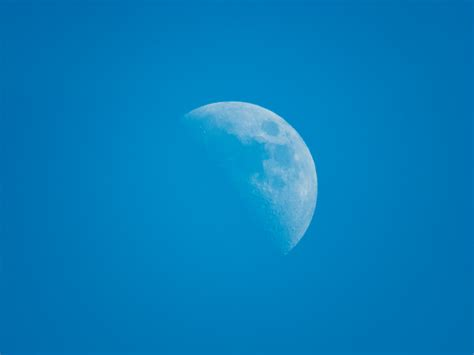 the blue picalls moon in the blue sky by jeffrey betts