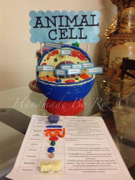Pin By Marie Harrod On School Ideas Animal Cell Project