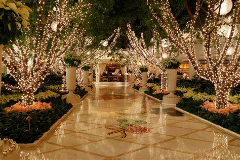 christmas tree lighting installed light installation lights installed