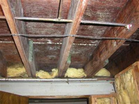 how to clean black mold in basement cleaning mold in basement basement mold cleaning